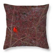 Male Red Cardinal In The Snow Throw Pillow