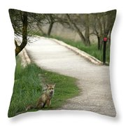 Male Red Fox Vulpes Vulpes Throw Pillow