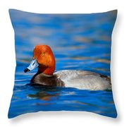 Male Red Head Duck Throw Pillow