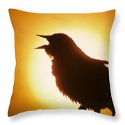 male Red-winged Blackbird singing at sunrise Throw Pillow