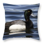 Male Scaup Throw Pillow