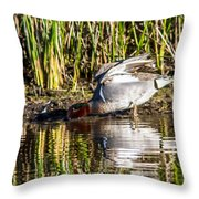 Male Teal Throw Pillow