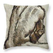 Male Torzo Throw Pillow