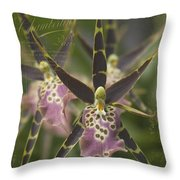 Maliko Dreams Throw Pillow