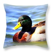 Mallard - 3000-l-012- Throw Pillow