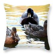 Mallard And Friends 2013 Throw Pillow