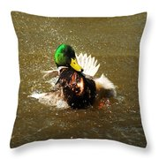 Mallard Bath Time Throw Pillow