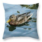 Solitaire Mallard Duck Throw Pillow