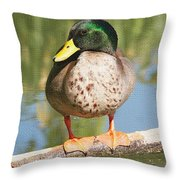 Mallard Duck On Log Throw Pillow