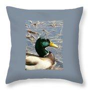 Mallard Duck Portrait Throw Pillow