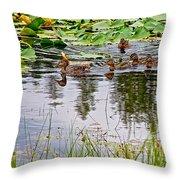 Mallard Ducks In Heron Pond In Grand Teton National Park-wyoming  Throw Pillow