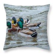 Mallard Ducks In Vee Formation Throw Pillow