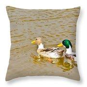 Mallard Ducks Pair Throw Pillow