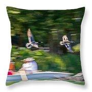 Mallard Flyover Throw Pillow