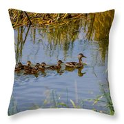 Mallard Hen And Ducklings Throw Pillow