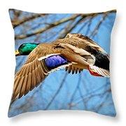 Mallard In Flight Throw Pillow