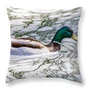Mallard In Froth Throw Pillow