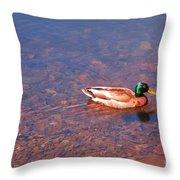 Mallard In Spring Throw Pillow