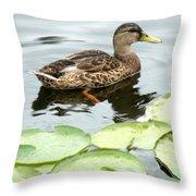 Mallard Lilly Pad Throw Pillow