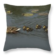 Mallard Mother With Ducklings Throw Pillow