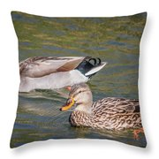 Mallard Pair Throw Pillow
