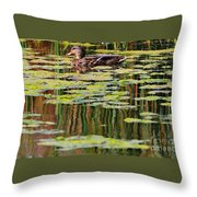 Mallard Pond Throw Pillow