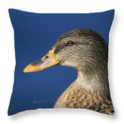 Mallard Queen Throw Pillow