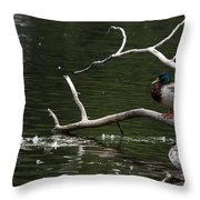 Mallard Standing Post Throw Pillow