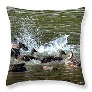 Mallard Water Party 2 Throw Pillow