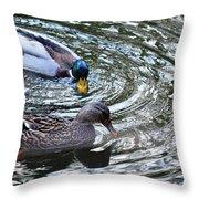 Mallards In The Creek Throw Pillow