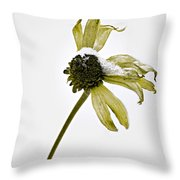 Malnourished Seed  Throw Pillow