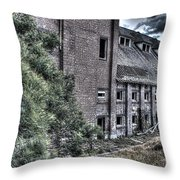 Malt Factory. Throw Pillow