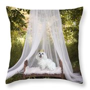Maltese Princess Throw Pillow by Andrea Auletta