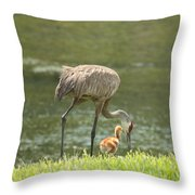 Mama And Chick Throw Pillow