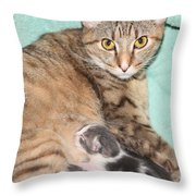 Mama Cat And Her Kittens Throw Pillow