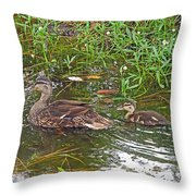 Mama Duck And Baby Throw Pillow