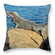 Mama Iguana Throw Pillow by Michael Madlem