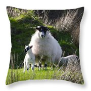 Mama Sheep And Her Two Lambs Throw Pillow