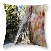 Mammoth Formation Throw Pillow