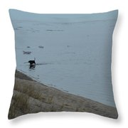 Man And Dog Throw Pillow