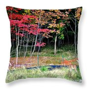 Man Ruins Nature Throw Pillow