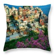 Manarola From Above Throw Pillow