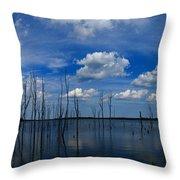 Manasquan Reservoir Panorama Throw Pillow