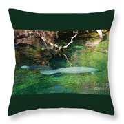 Manatee N Pup Throw Pillow