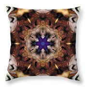 Mandala 16 Throw Pillow