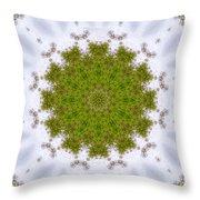 Mandala103 Throw Pillow