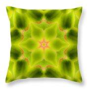 Mandala80 Throw Pillow