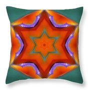 Mandala91 Throw Pillow