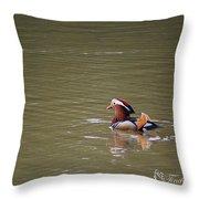 Mandarin Duck 20130507_47 Throw Pillow