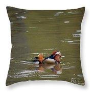 Mandarin Duck 20130507_99  Throw Pillow